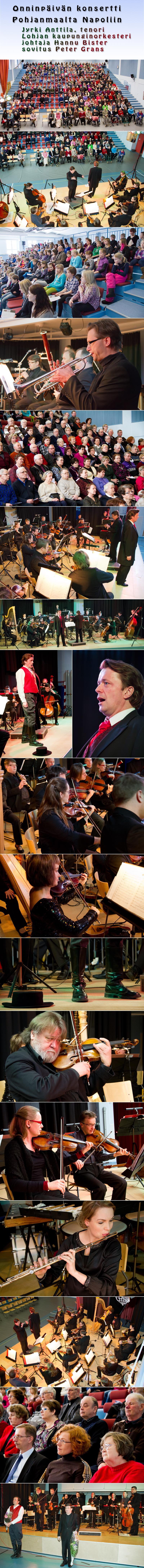Onnin_konsertti 2012